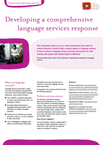 Developing a comprehensive language services response