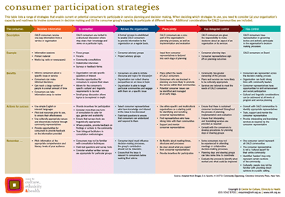 consumer participation strategies